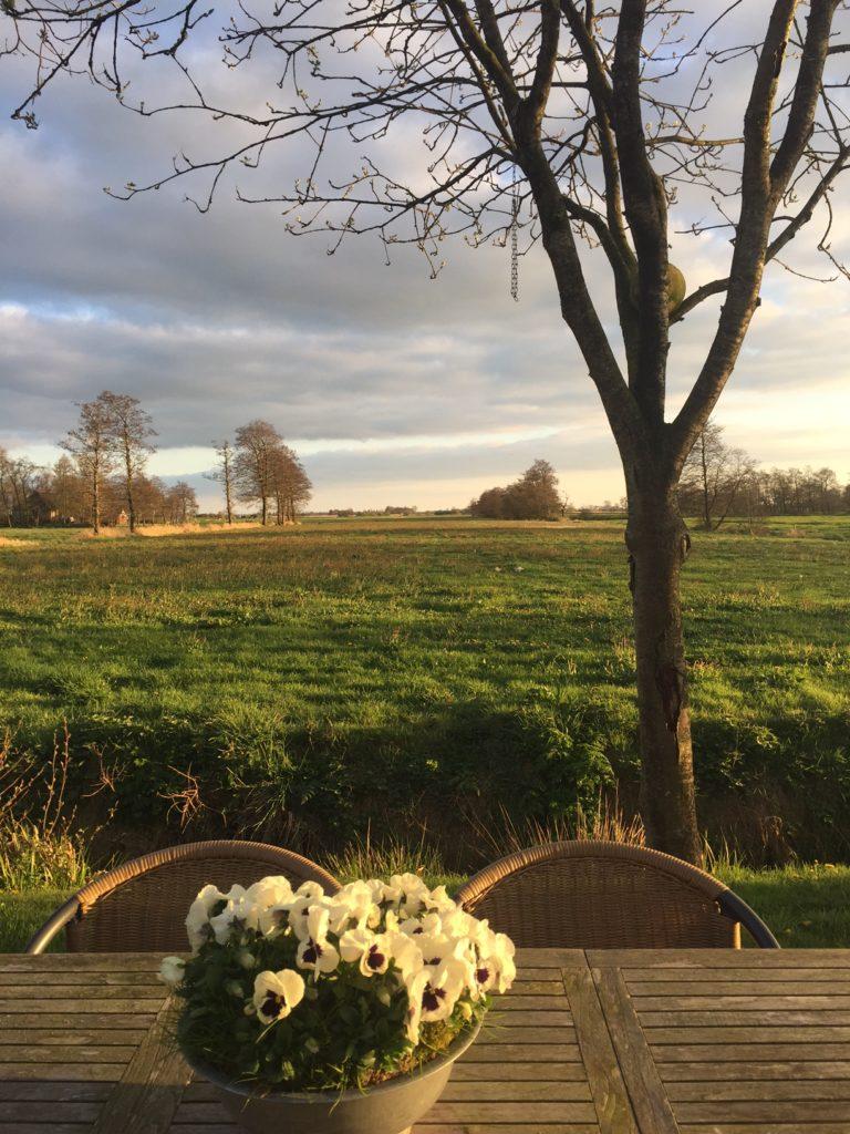 Uitzicht Justjesoars B&B AldeFeanen Friesland Foodblog Foodinista
